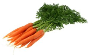 Mon chat peut-il manger des carottes?