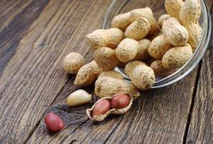 Mon chat peut-il manger des noix?